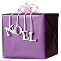 Noel fabriquer un sac d 39 emballage de cadeau original bricoler et pr parer no l avec les - Paquet jardin deco noel nancy ...