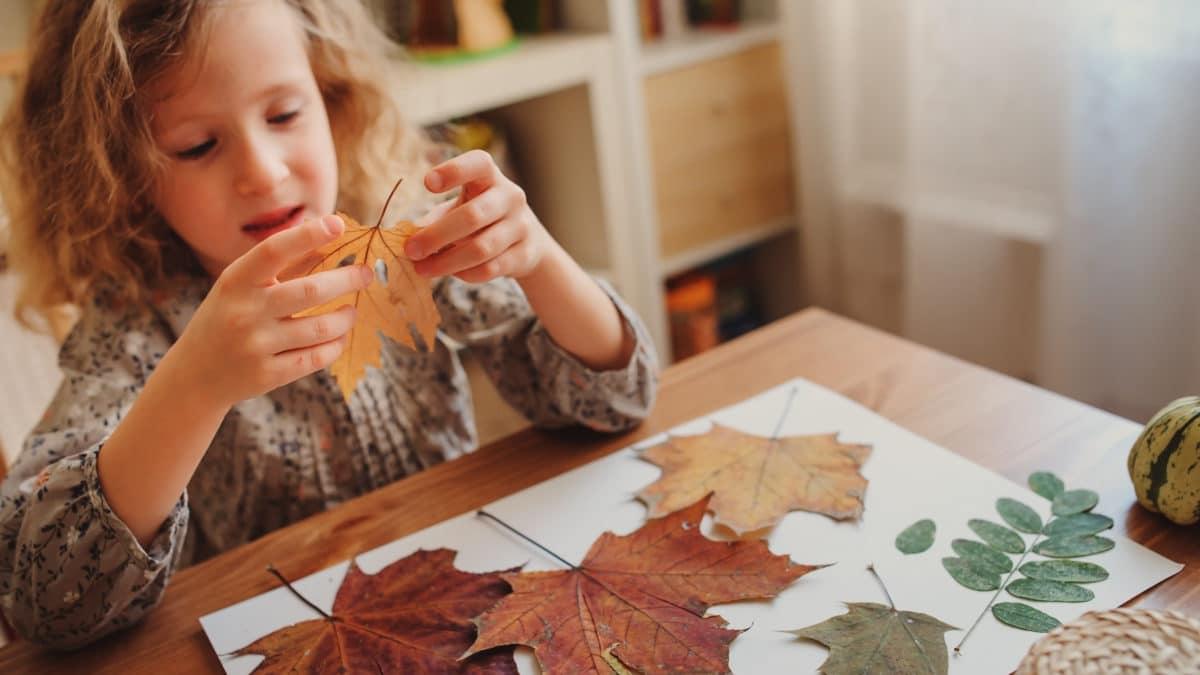 Activités et bricolage d'automne avec les enfants de maternelle : coller des feuilles mortes et composer des tableaux ou des personnages