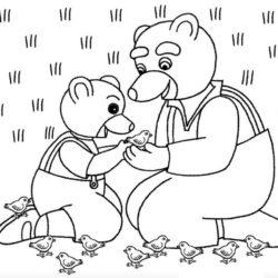 coloriage petit ours brun et les bébés oiseaux