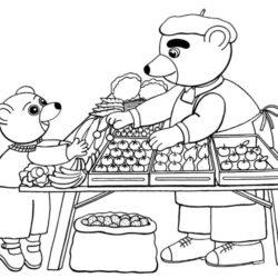 coloriage petit ours brun fait son marché