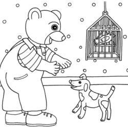 coloriage petit ours brun joue avec son chien et ses animaux