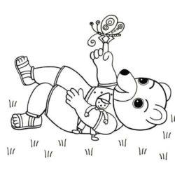 coloriage petit ours brun s'amuse dans l'herbe avec un papillon