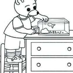 petit ours brun donne à manger à ses poissons