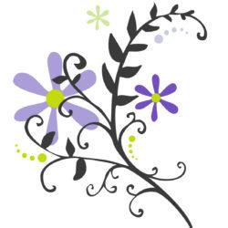 image fleurs divers