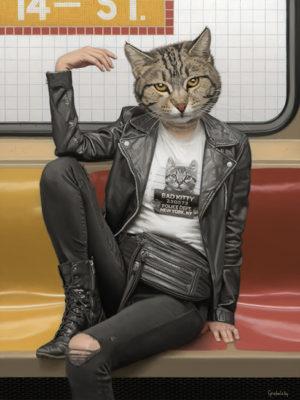 animaux dans le métro mattehew Grabelsky