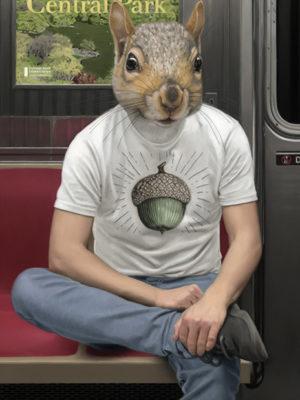écureil métro new yorkais mattehew Grabelsky