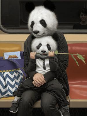 pandas métro new york mattehew Grabelsky